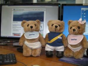 CareFlight Bears in the OWS Forecasting Office